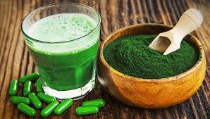 indijski trpotec in alga spirulina za prebavo