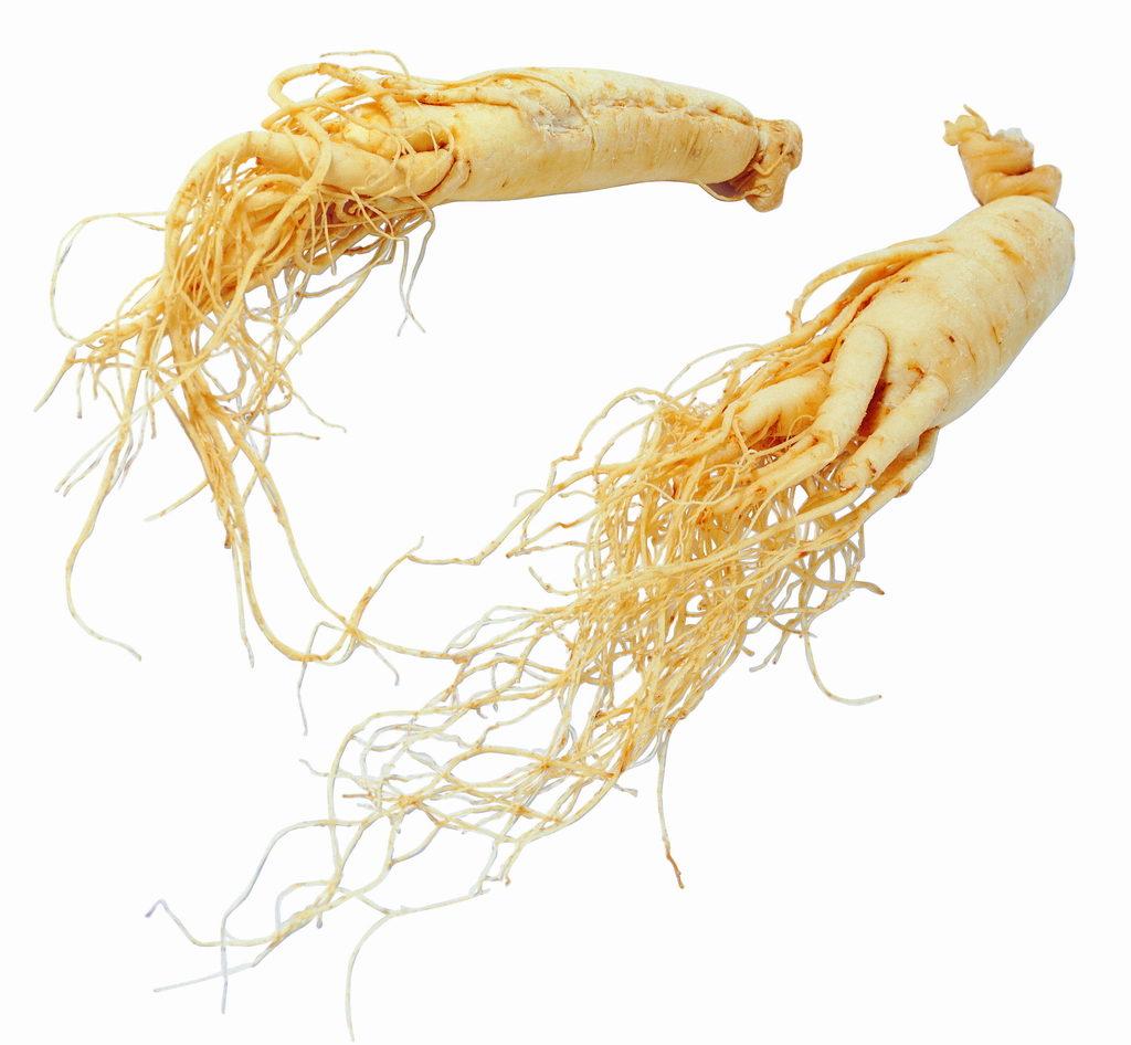 Ginseng Panax velja za super živilo?